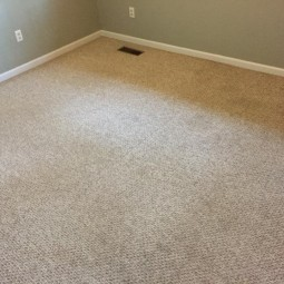 clean carpeting by honest maids
