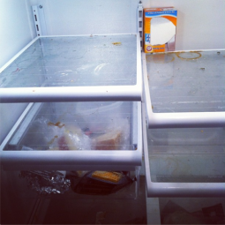 dirty refrigerator cleaning service